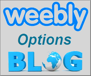Элементы блога Weebly