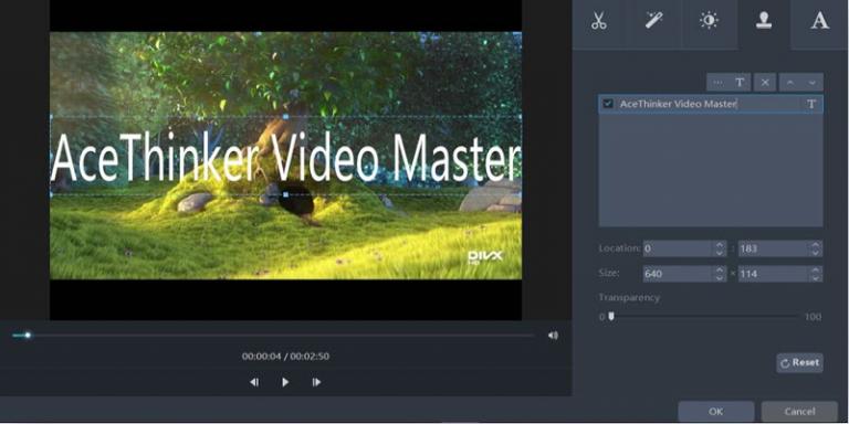 AceThinker Video Master – лучшая программа для редактирования и конвертирования видео.